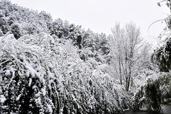 独山2014年第一场雪